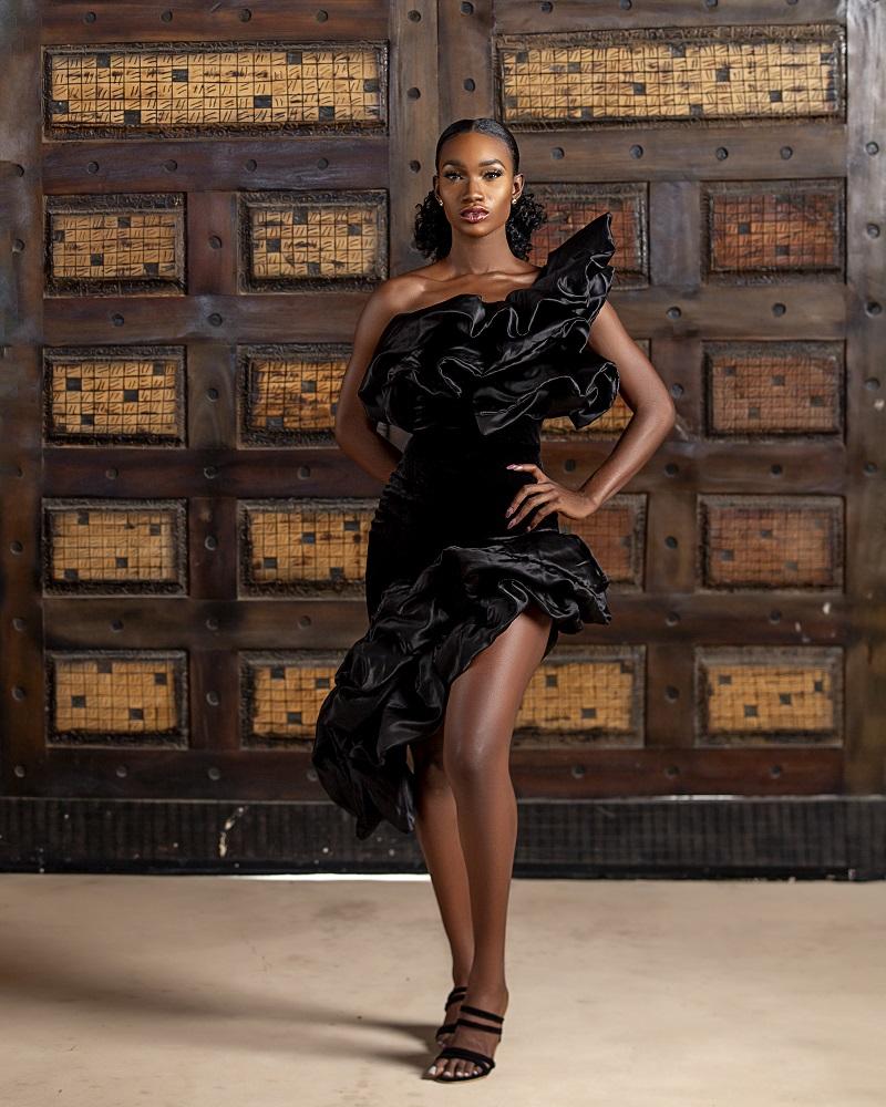 LadyBeellionaire the one dress 2